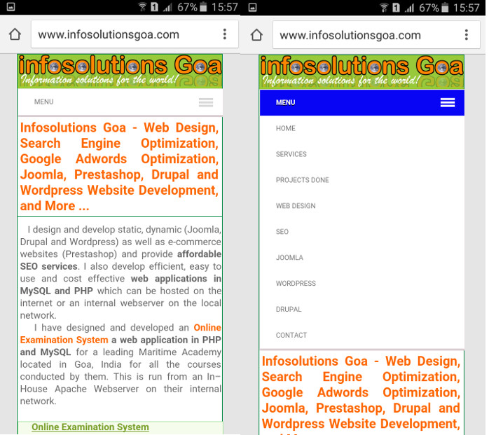 Mobile View of Responsive Website